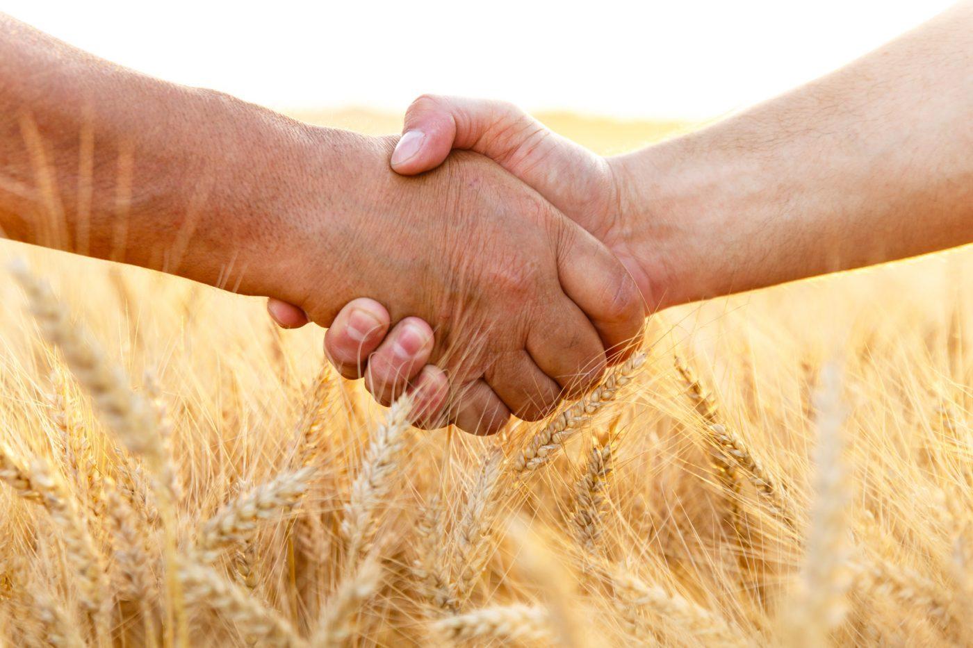 Partenaire matériel agricole des céréaliers et éleveurs - Hamel