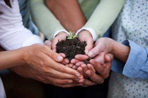 cooperation-2017-hamel-mains-plantes-agriculture-biologique